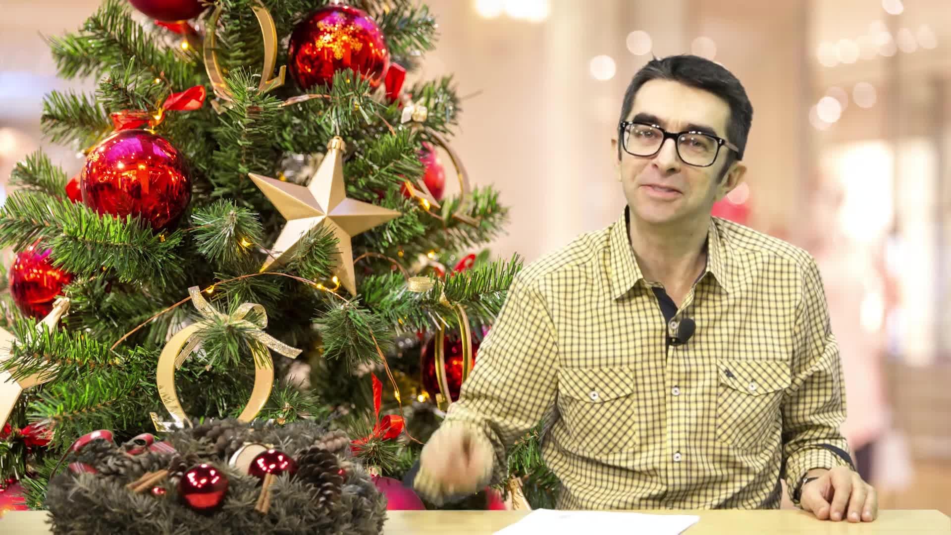 Găinuşă şi Bradul de Crăciun