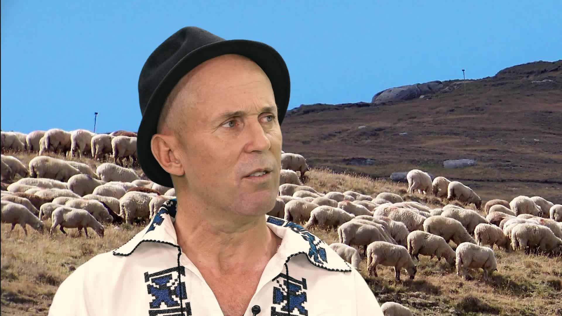 Ciobanii şi filmele de groază