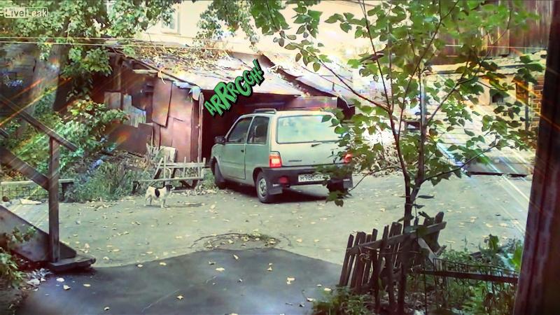 Femeia la volan: cum să parchezi într-un garaj. VIDEO